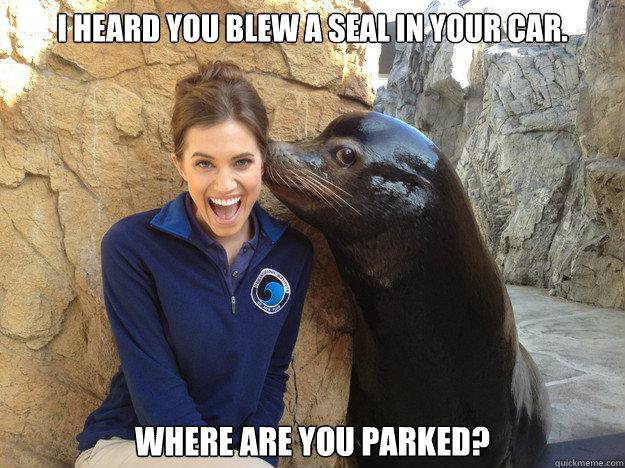 Penguin blew a seal
