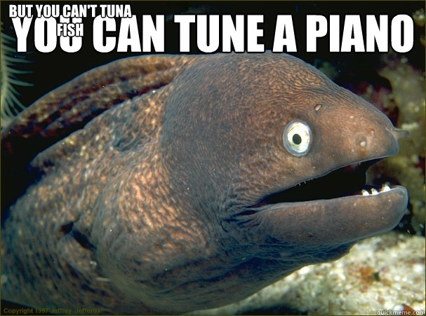 You Can Tune a Piano  but You Can't Tuna Fish - You Can Tune a Piano  but You Can't Tuna Fish  Bad Joke Eel