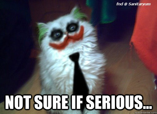 Not sure if serious... - Not sure if serious cat - quickmeme