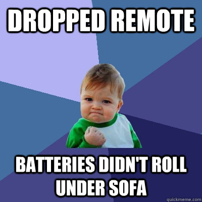 Dropped Remote Batteries didn't roll under sofa - Dropped Remote Batteries didn't roll under sofa  Success Kid