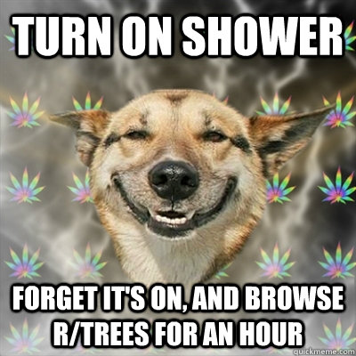 Turn on shower forget it's on, and browse r/trees for an hour - Turn on shower forget it's on, and browse r/trees for an hour  Stoner Dog