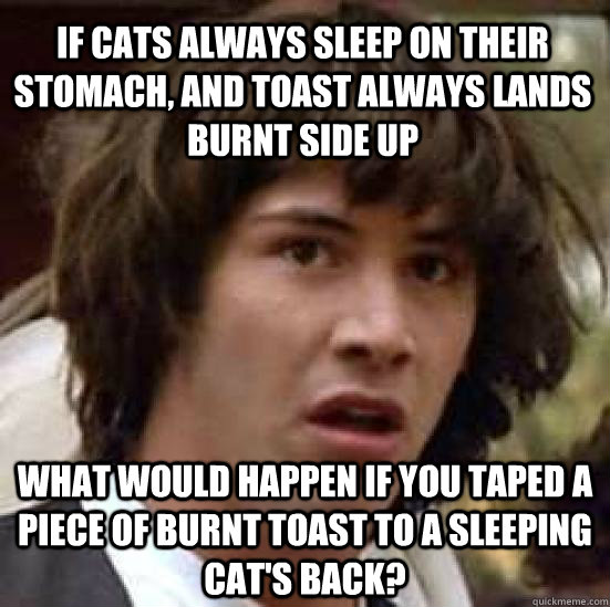 If cats always sleep on their stomach, and toast always lands burnt side up what would happen if you taped a piece of burnt toast to a sleeping cat's back? - If cats always sleep on their stomach, and toast always lands burnt side up what would happen if you taped a piece of burnt toast to a sleeping cat's back?  conspiracy keanu