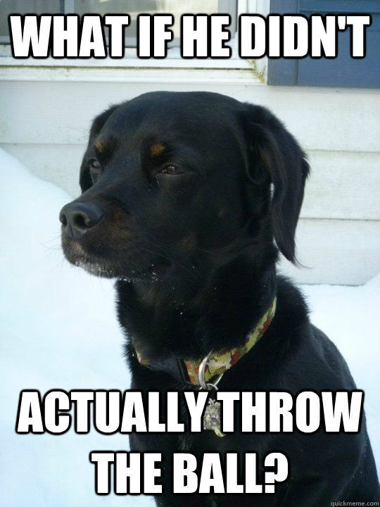 What if he didn't actually throw the ball?  Philosophical Puppy