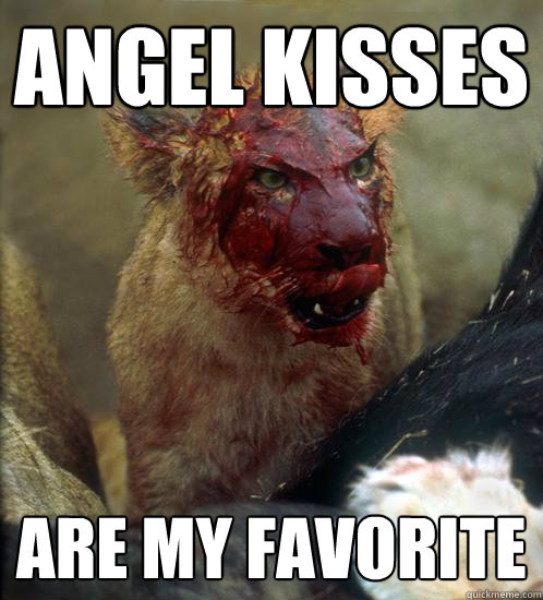 Angel Kisses Are my favorite - Angel Kisses Are my favorite  Misc