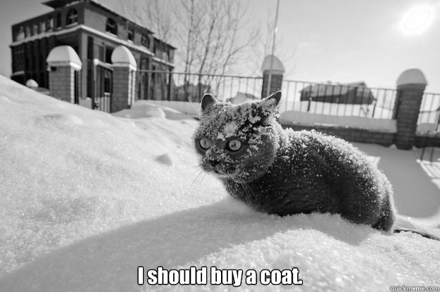 I should buy a coat. -  I should buy a coat.  Misc