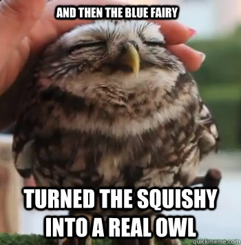 and then the blue fairy turned the squishy into a real owl