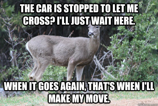 deer hunting memes - photo #26