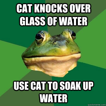 Cat knocks over glass of water Use cat to soak up water - Cat knocks over glass of water Use cat to soak up water  Foul Bachelor Frog