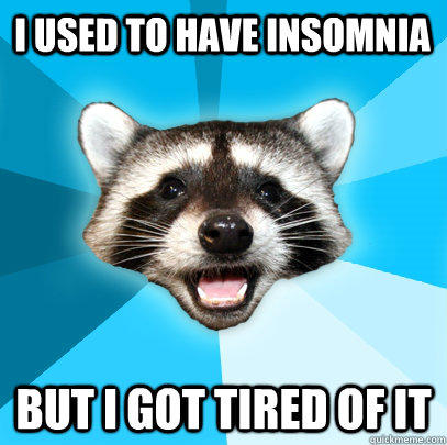 I USED TO HAVE INSOMNIA BUT I GOT TIRED OF IT - I USED TO HAVE INSOMNIA BUT I GOT TIRED OF IT  Lame Pun Coon