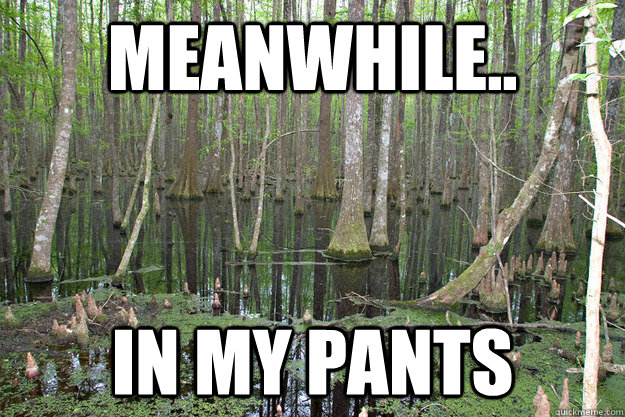 MEanwhile.. In my pants - MEanwhile.. In my pants  Misc