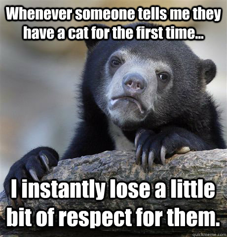 Whenever someone tells me they have a cat for the first time... I instantly lose a little bit of respect for them.   - Whenever someone tells me they have a cat for the first time... I instantly lose a little bit of respect for them.    Confession Bear