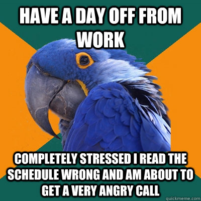 Have a day off from work completely stressed i read the schedule wrong and am about to get a very angry call - Have a day off from work completely stressed i read the schedule wrong and am about to get a very angry call  Paranoid Parrot