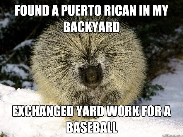 Found a puerto rican in my backyard Exchanged yard work for a baseball