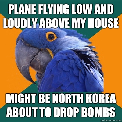 Plane flying low and loudly above my house Might be North Korea about to drop bombs - Plane flying low and loudly above my house Might be North Korea about to drop bombs  Paranoid Parrot