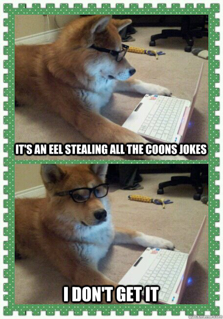 It's an eel stealing all the coons jokes I don't get it - It's an eel stealing all the coons jokes I don't get it  hello