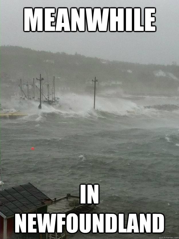 meanwhile in newfoundland memes quickmeme
