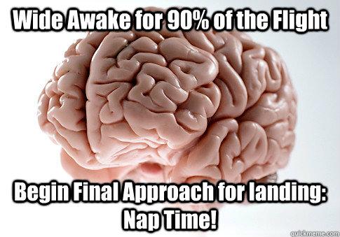 Wide Awake for 90% of the Flight Begin Final Approach for landing: Nap Time! - Wide Awake for 90% of the Flight Begin Final Approach for landing: Nap Time!  Scumbag Brain