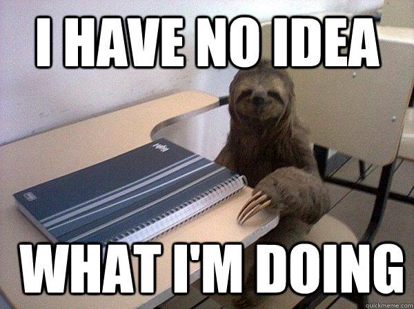 I HAVE no idea  WHAT I'm doing - I HAVE no idea  WHAT I'm doing  Law School Exam-Study Sloth