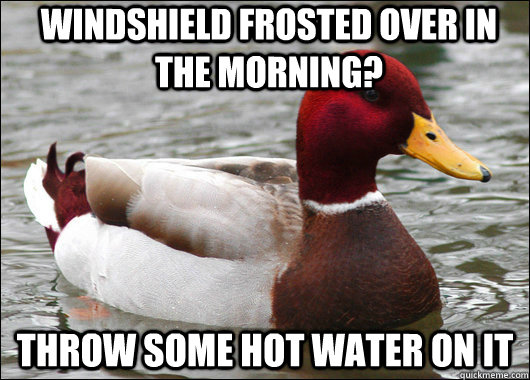 Windshield frosted over in the morning? Throw some hot water on it - Windshield frosted over in the morning? Throw some hot water on it  Malicious Advice Mallard