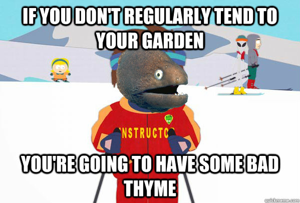 If you don't regularly tend to your garden You're going to have some bad thyme