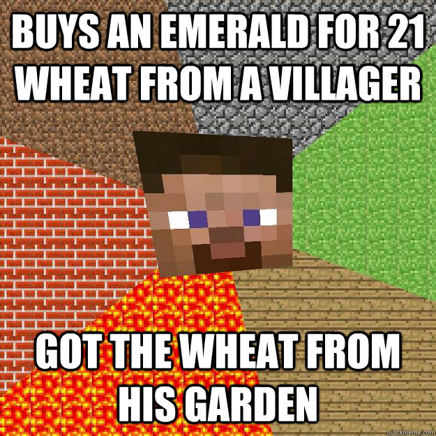 Buys an emerald for 21 wheat from a villager Got the wheat from his garden  Minecraft