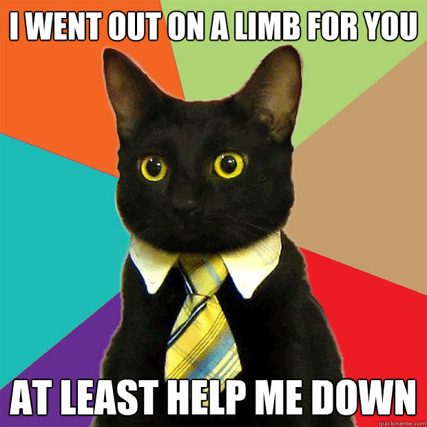 I went out on a limb for you at least help me down - I went out on a limb for you at least help me down  Business Cat
