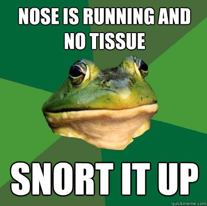 Nose is running and no tissue Snort it up - Nose is running and no tissue Snort it up  Foul Bachelor Frog