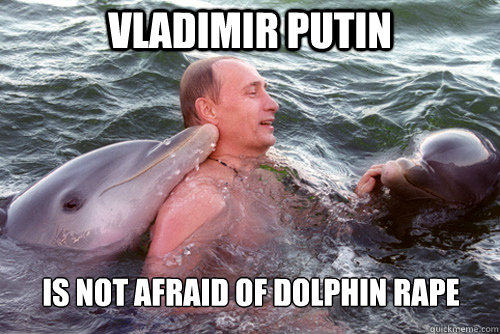 Vladimir Putin  is not afraid of dolphin rape  Putin