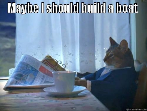 MAYBE I SHOULD BUILD A BOAT  The One Percent Cat