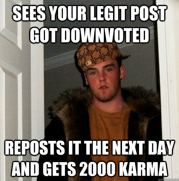 Sees your legit post got downvoted Reposts it the next day and gets 2000 karma - Sees your legit post got downvoted Reposts it the next day and gets 2000 karma  Scumbag Steve