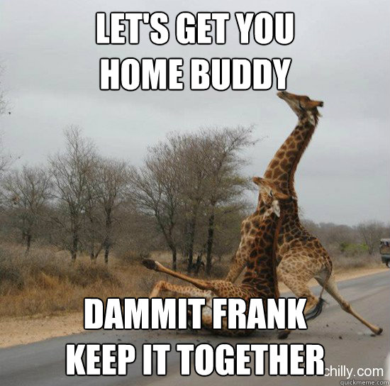 Let's get you  home buddy Dammit Frank  Keep it together