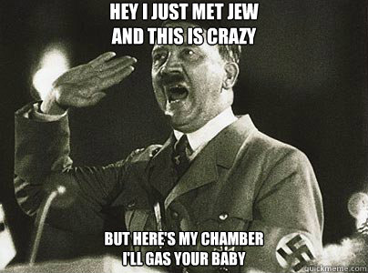 Hey I just met Jew And this is crazy But here's my chamber I'll gas your baby