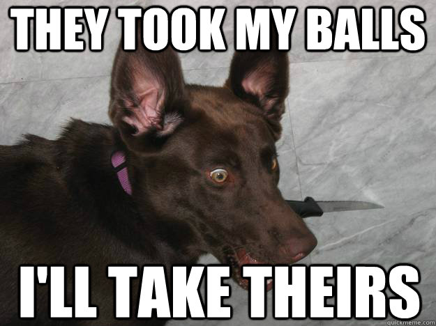 They took my balls I'll take theirs - They took my balls I'll take theirs  Psychopathic Dog