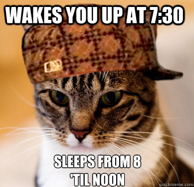 Wakes you up at 7:30 Sleeps from 8 'til noon