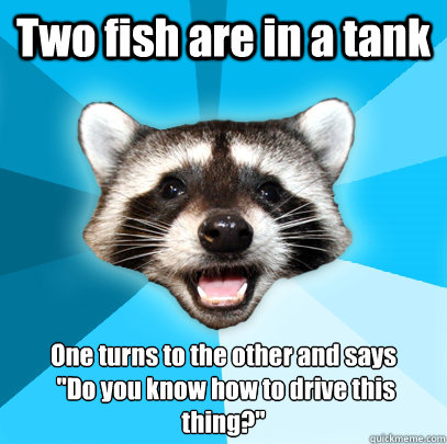 Two fish are in a tank One turns to the other and says