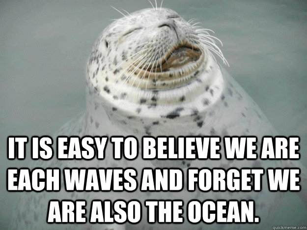 It is easy to believe we are each waves and forget we are also the ocean. - It is easy to believe we are each waves and forget we are also the ocean.  Zen Seal
