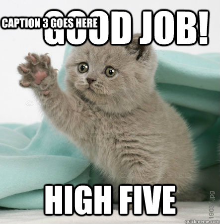 Good job! High five  Caption 3 goes here  High Five Cat