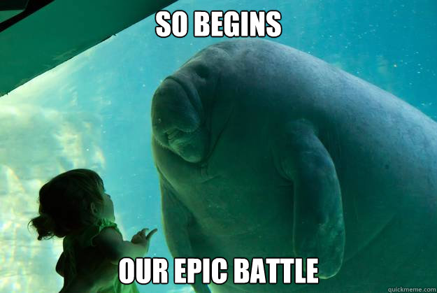 678b831dc93af9781b4232d0f741bd6314b441e32467caad754bc89c137d21a2 so begins our epic battle caption 3 goes here overlord manatee
