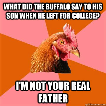 what did the buffalo say to his son when he left for college? i'm not your real father - what did the buffalo say to his son when he left for college? i'm not your real father  Anti-Joke Chicken
