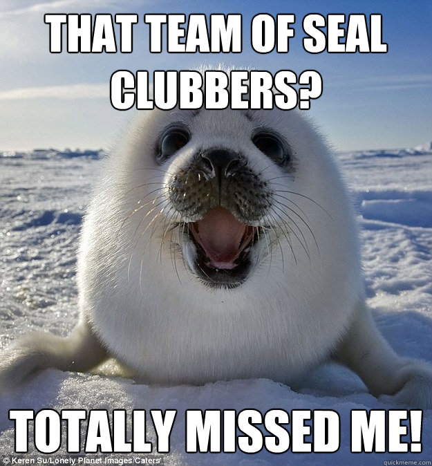That team of seal clubbers? Totally missed me! - That team of seal clubbers? Totally missed me!  Easily Pleased Seal