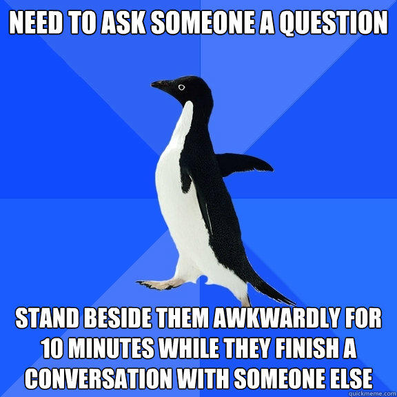 Need to ask someone a question Stand beside them awkwardly for 10 minutes while they finish a conversation with someone else - Need to ask someone a question Stand beside them awkwardly for 10 minutes while they finish a conversation with someone else  Socially Awkward Penguin