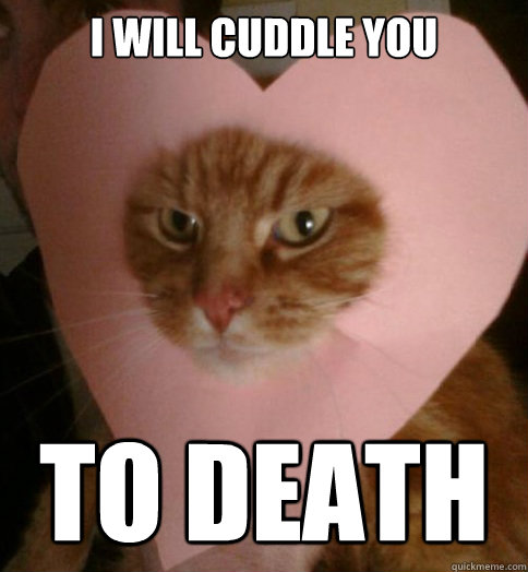I will cuddle you TO DEATH  Valentine Cat