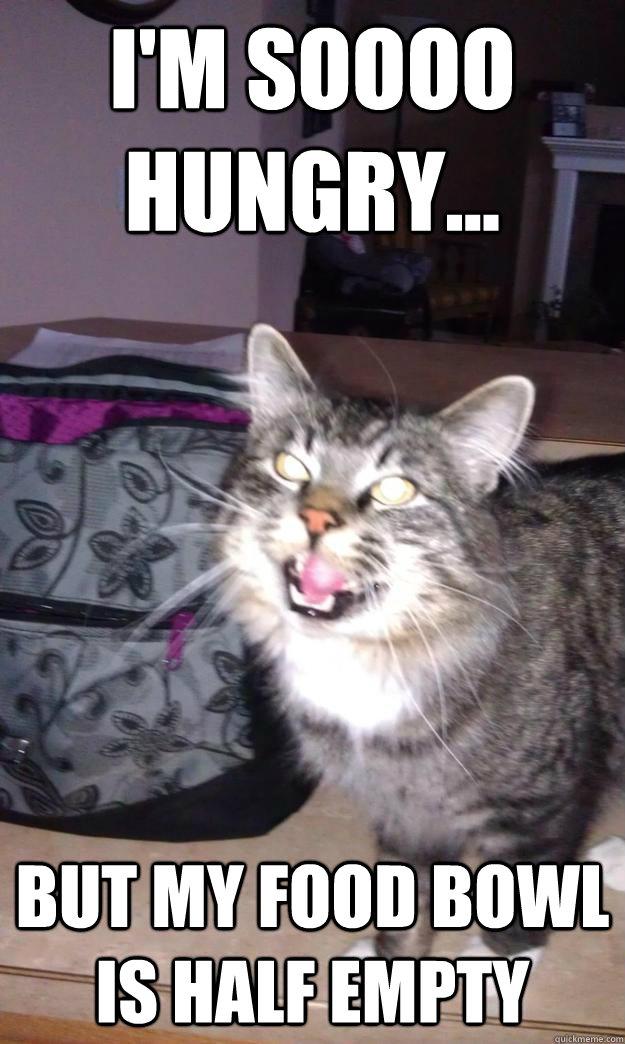 Business Cat Meme Vacuum