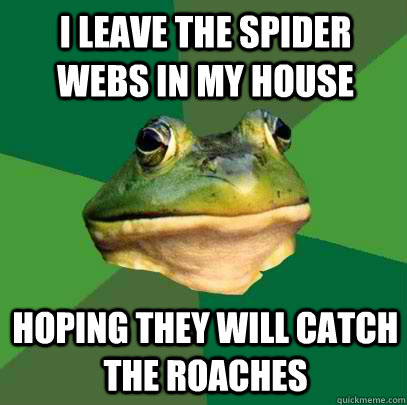 I leave the spider webs in my house Hoping they will catch the roaches - I leave the spider webs in my house Hoping they will catch the roaches  Foul Bachelor Frog