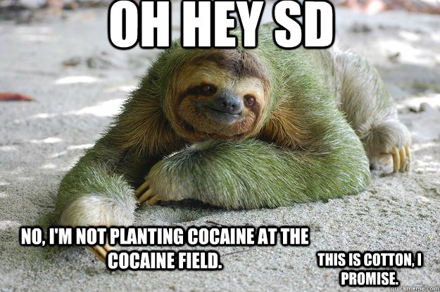 Oh hey SD No, I'm not planting cocaine at the cocaine field. This is cotton, I promise.  Sloth Pun Sloth