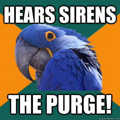 Hears Sirens THE PURGE! - Hears Sirens THE PURGE!  Paranoid Parrot