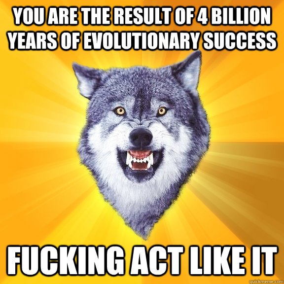 you are the result of 4 billion years of evolutionary success fucking act like it - you are the result of 4 billion years of evolutionary success fucking act like it  Courage Wolf