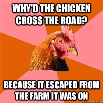 Why'd the chicken cross the road? because it escaped from the farm it was on  Anti-Joke Chicken