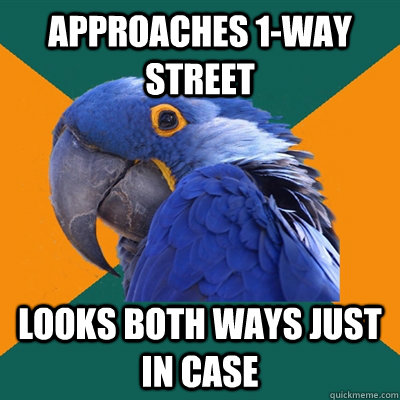 Approaches 1-way street Looks both ways just in case - Approaches 1-way street Looks both ways just in case  Paranoid Parrot