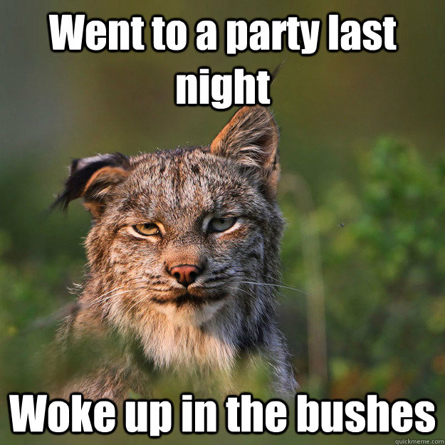 went to a party last night woke up in the bushes bad